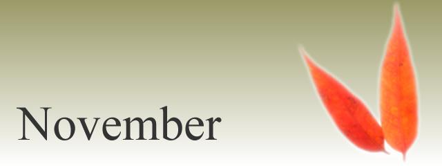 2017.11月(Nov.2017)
