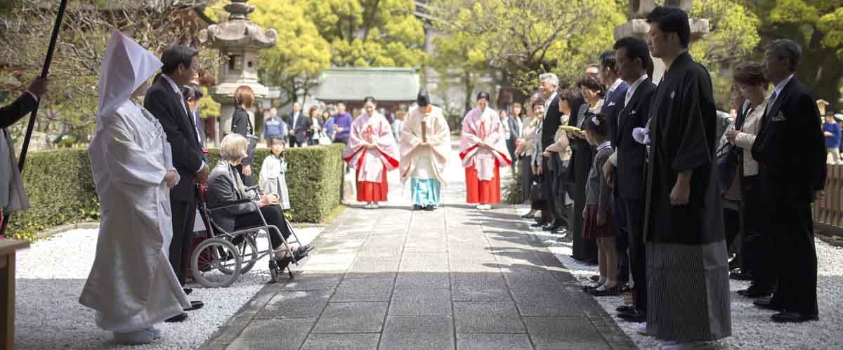 春の神社結婚式キャンペーン